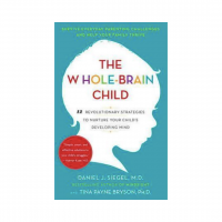 The Whole Brain Child | Mindful Little Minds