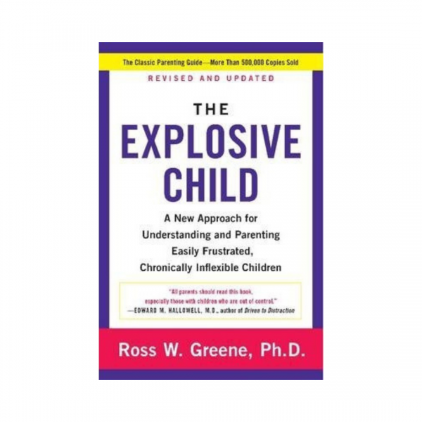 The Explosive Child | Mindful Little Minds