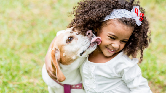 How to How to Build Emotional Intelligence in kids | Mindful Little Minds