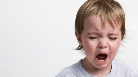 Toddler Tantrums: How to respond when your child has a meltdown | Mindful Little Minds